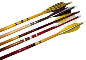 LNA Bison Elite Arrows