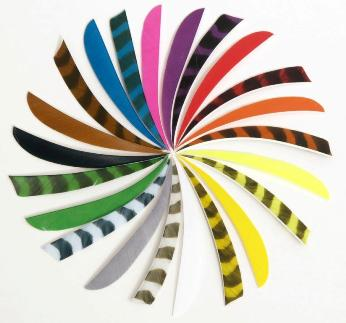 Trueflight Feathers 5 1/2 inch Shield Barred Colors